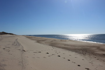 Footprints left in sand at isolated sandy coastal ocean beach