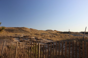 Sandy coastal beach dunes surrounded by fence and beach grass