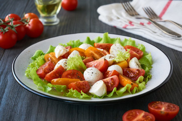 Vegetable salad with tomatoes and mozzarella on a plate