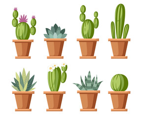 Set of flower and decorative cactus. Home plants cactus in pots and with flowers. A variety of decorative floral. Cartoon style design. Vector illustration isolated on white background