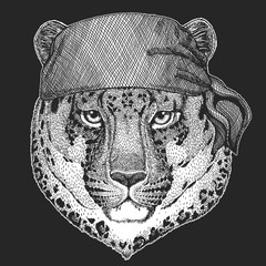 Wild cat Leopard Cat-o'-mountain Panther Cool pirate, seaman, seawolf, sailor, biker animal for tattoo, t-shirt, emblem, badge, logo, patch. Image with motorcycle bandana