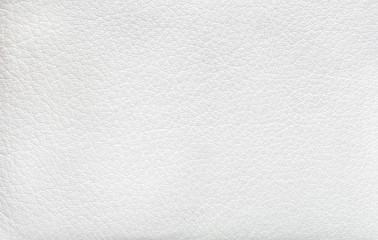 Goat skin texture. Goat white leather surface home screen. Leather from goat, texture. Texture of goat's skin, idle screen. Goatskin white pattern.