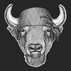 Buffalo, bison,ox, bull Cool pirate, seaman, seawolf, sailor, biker animal for tattoo, t-shirt, emblem, badge, logo, patch. Image with motorcycle bandana