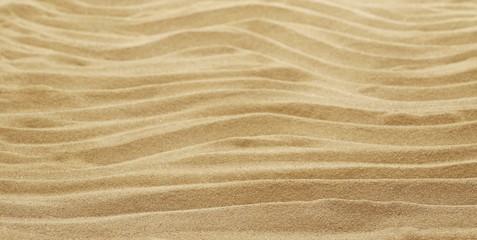Sand dune desert background and texture