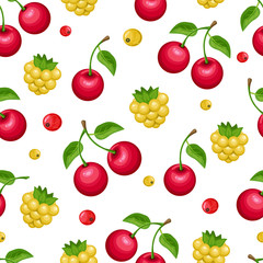 Seamless pattern with berries on white background.  Colorful vector illustration.