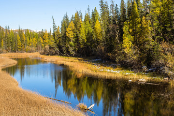 Katun river in Altai mountains, Russia.