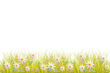Green meadow grass, daisy chamomile flowers on white isolated background. Spring summer sale, festive template for retail poster and advertising design wtih space for text. Vector illustration