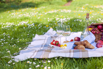 Two glasses and a bottle of wine. Picnic on the green grass in the park. Good weekend. Spring