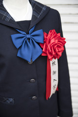 Japanese School Girl's Uniform with Red Ribbon