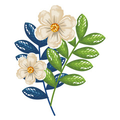 flowers and leafs decorative icon vector illustration design