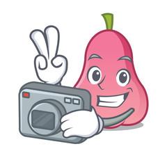 Photographer rose apple mascot cartoon