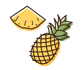 Pineapple outline illustration with watercolor effect. Vector doodle sketch hand drawn illustration