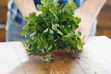 Male hands holding bunch parsley wooden table close up