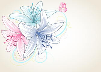 Beautiful colorful hand-drawing background with lily flowers and butterfly.