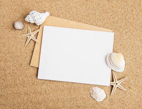 Shells, seastars and an blank postcard