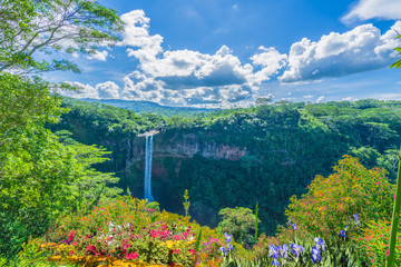 Wall Mural - Chamarel waterfall in junle of  Mauritius island, Africa