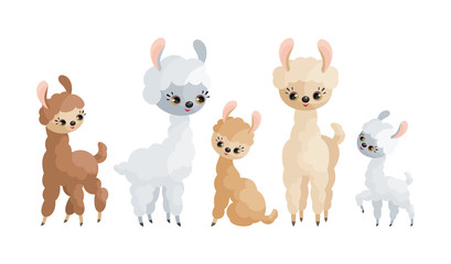 Cute llamas and their cubs. Colorful vector illustrations in cartoon style isolated on a white background.
