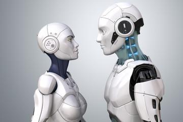Robot couple
