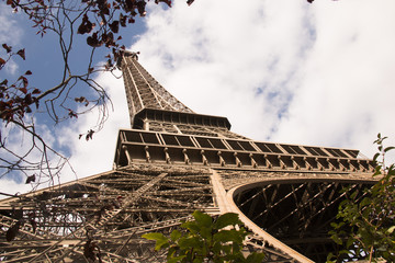 eiffel Tower low shot with trees and plants