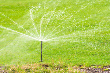 Lawn sprinkler spaying water over green grass, irrigation system.