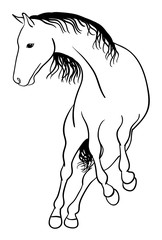 Horse line art 03. Good use for symbol, logo, web icon, mascot, sign, or any design you want.