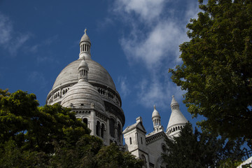 The domes of the french church Sacré-Cœur de Montmartre on the hill in paris with unfocused green trees, bushes and red flowers in the foreground
