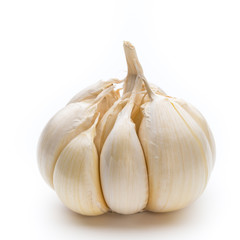 Garlic isolated on the white background.