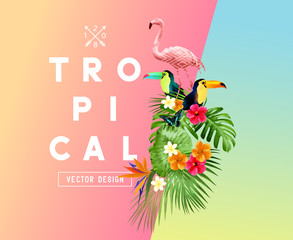 Bright tropical floral elements with Hibiscus flowers, toucans and Flamingos and a set of palm leaves on a gradient background. Vector illustration