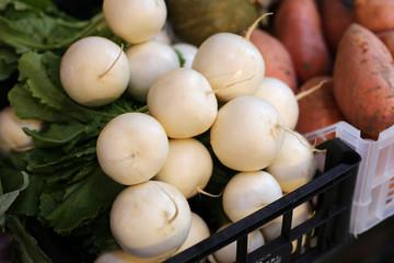 White radish at the farmer's market