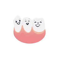 Healthy and clean tooth characters in pink gum smiling and happy. Isolated cute cartoon white joyful teeth for dental health and oral care concept. Vector illustration.