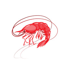 Shrimp vector illustration. Isolated object on white background. Seafood product, restaurant menu. Hand drawn painting.