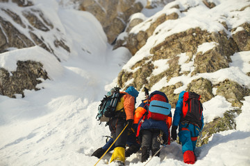 Group mountaineers on a background of snow-covered rocks, rear view.