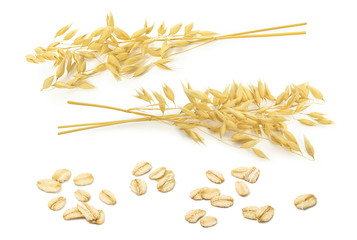 Oatmeal set. Oat ears and rolled grains isolated on white background