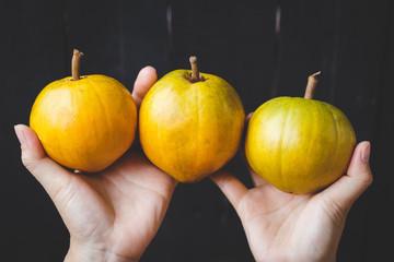 Lucuma fruits-Eggfruits