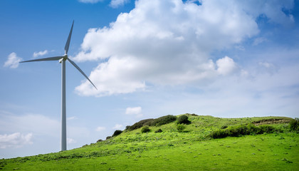 windturbine on a meadow