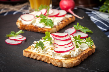 Light healthy sandwiches with bread toasts, soft cheese and freshly gathered organic radishes and parsley.