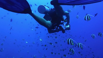 Underwater scenery, silhouette of diver in the deep blue water