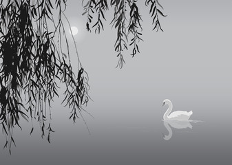 Wall Mural - black and white background with white swan and willow branches, vector illustration