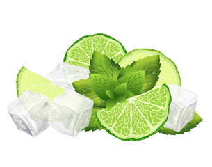 Sliced lime, mint leaves and ice cubes, vector illustration of ingredients for mojito cocktail.