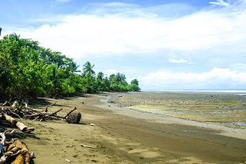 Beach landscape in Corcovado National Park, Costa Rica