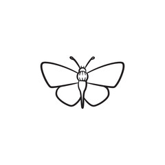 Butterfly hand drawn outline doodle icon. Insect butterfly vector sketch illustration for print, web, mobile and infographics isolated on white background.