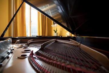 Grand piano in room interior