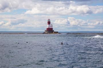 Northumberland Lighthouse