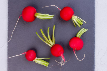 Group of red radishes, top view. Red salad radish on black slate close up. Why to eat organic.