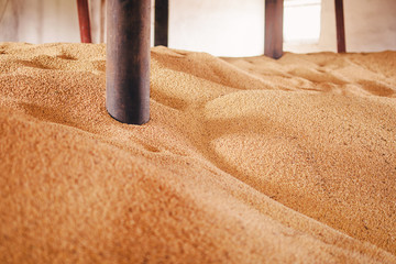Fototapete - fertilizer for the fields is in the warehouse of a plant for the production of agrochemistry