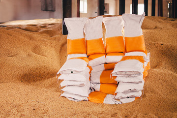 Fototapete - rectangular sacks with finished products stand in the middle of the fertilizer warehouse for the land