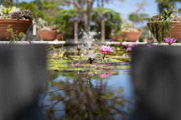 South Florida Nature Photography