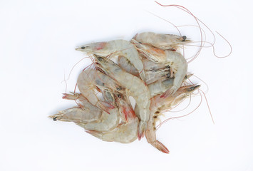 Fresh shrimp isolate on white background.