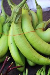 Fresh eggplant green organic in the market