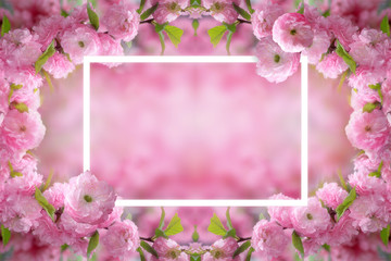 Mysterious spring floral background and frame with blooming pink sakura flowers